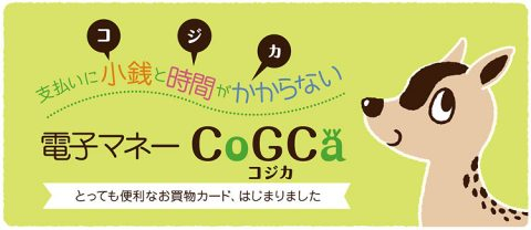 CoGCaバナー